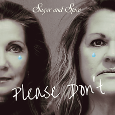 Please Don't_coverart.png
