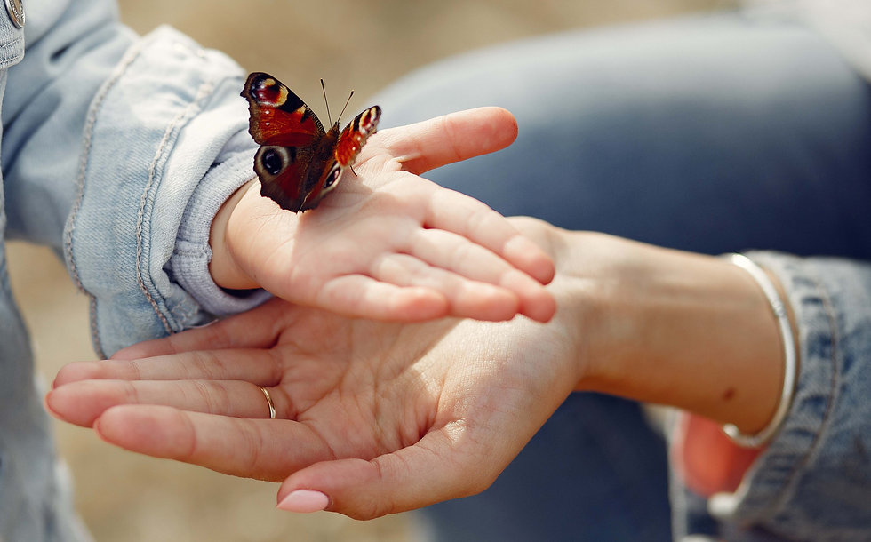little-girl-holding-butterfly crop.jpg