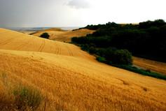 La Puglia tra oro e argento