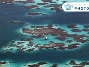Les photos gagnantes Journée mondiale de l'océan 2020