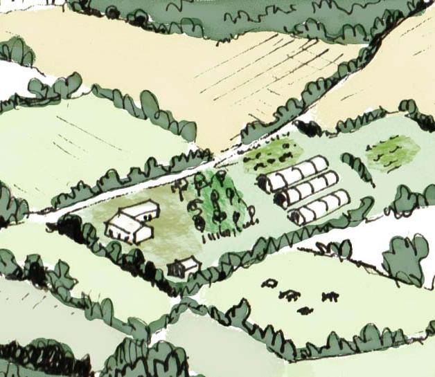 Projet Agricole