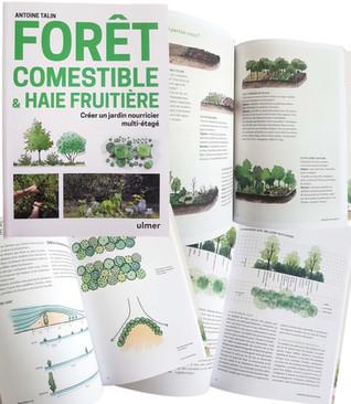 Illustrations livres imprimés