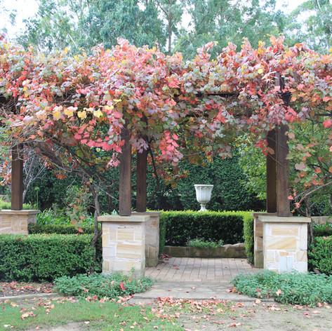 Autumn Country Garden