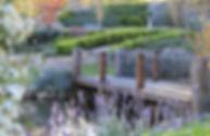 IMG_5006 cropped.jpg