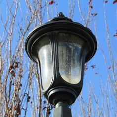 The Narnia Light