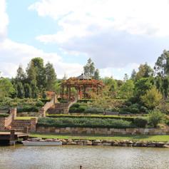 The Terrace Garden