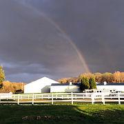 rainbow cr1557.jpg