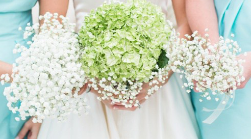Bouquet green Babys breath.png