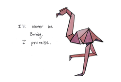 flamingo color.png