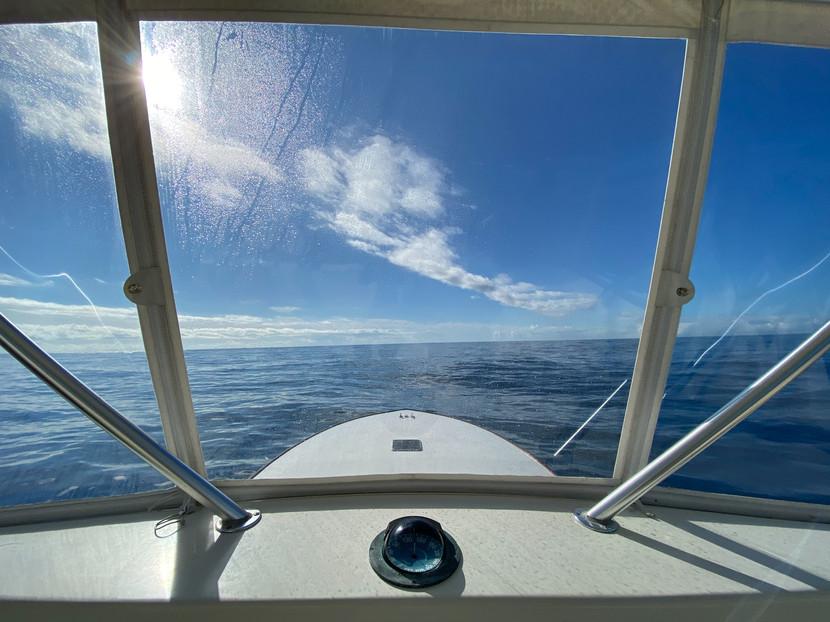 lulu_sportfishing-91.jpg