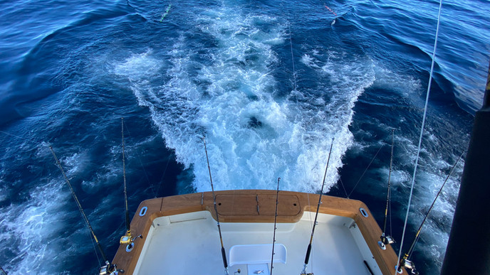 lulu_sportfishing-55.jpg