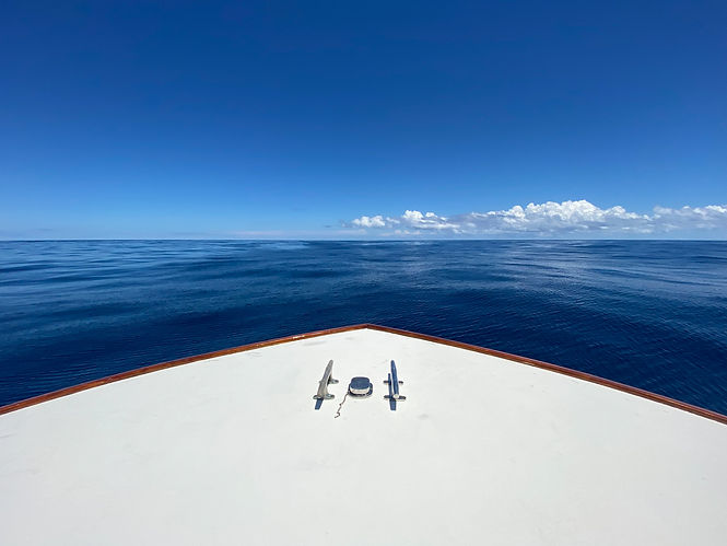 lulu_sportfishing-229.jpg