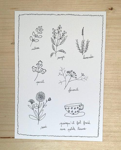 Carte postale - Cadeaux