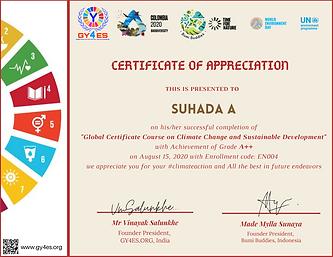CCSD_Certificate.png