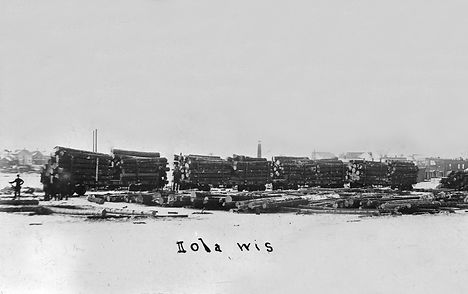 RR cars w-logs from N shore of lake.jpg