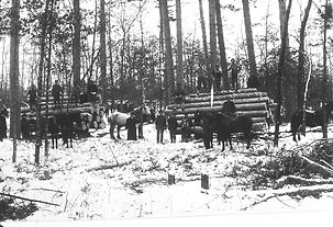 Wipf's Logging camp.jpg