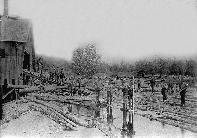 log monkeys feeding logs into sawmill fr