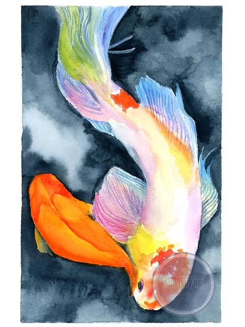 Koi Fish with Border