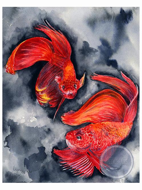 Betta Fish with Border