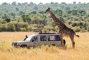 African-Safari-Tours-tanzania-safari-pac