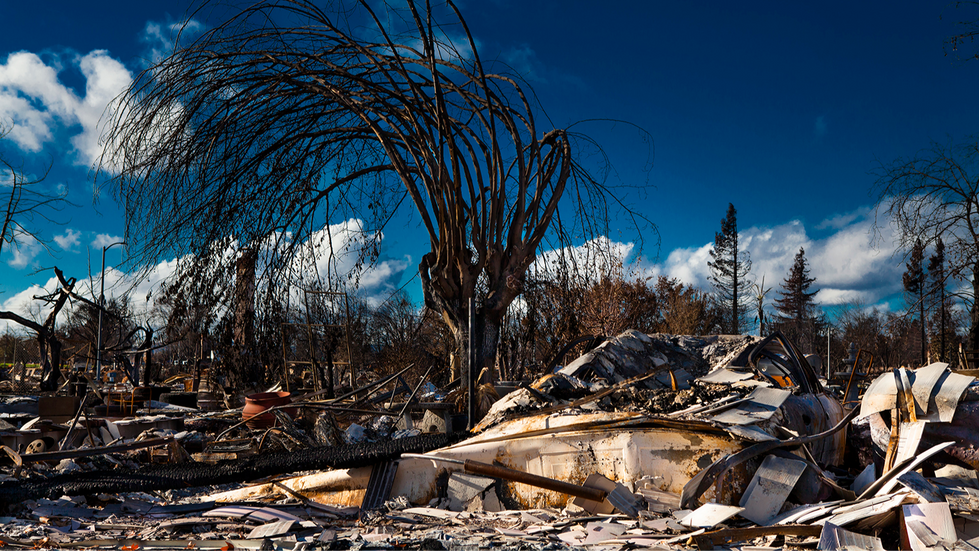 California-Wildfire-Tubbs-what is left-W