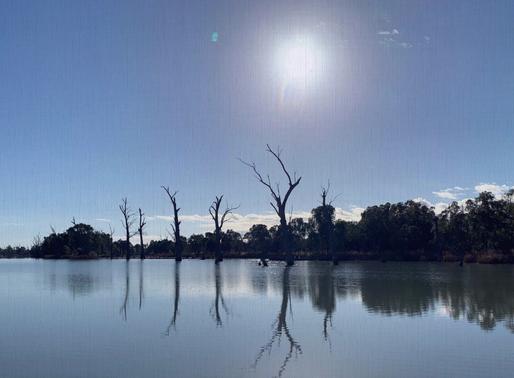 Crisp Foggy Morning on the Murray River