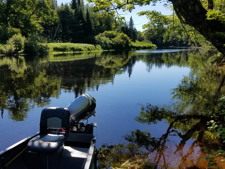 View from the Lake: Stress Tests & Tight Lines