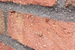 waterproof brick