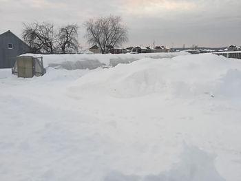 serre neige.jpg