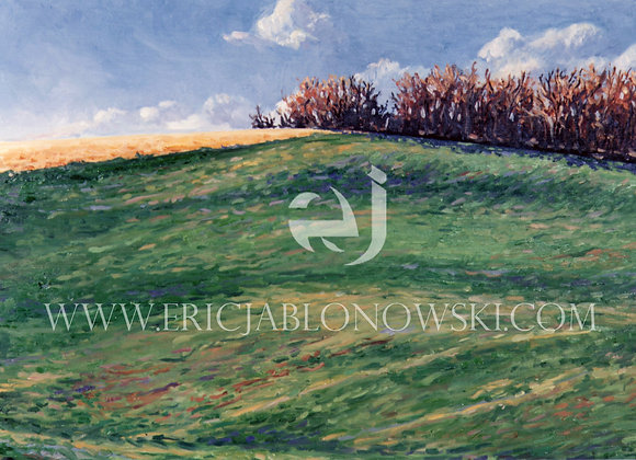 """Fields"" in the Afternoon - Email for other sizes/prices."