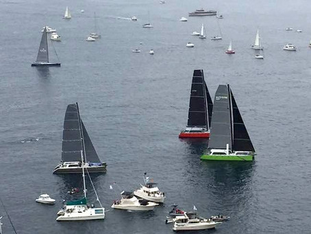 UltimTeam Phaedo sur la Transpac