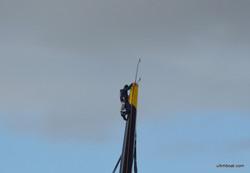Un équipier dans le mât de Gitana 17