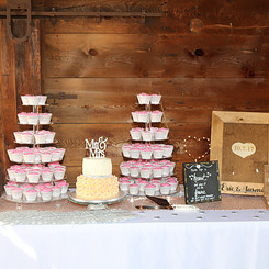 Cake and Cupcakes at Reception