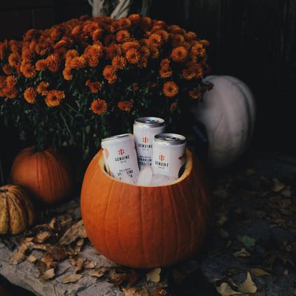 Post #15 Oct 30.JPG