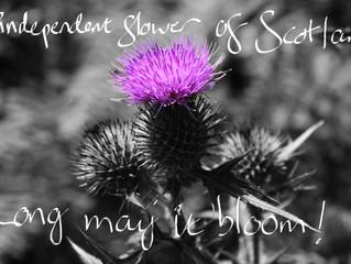 Good Luck Scotland!