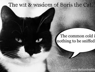 More sound advice from Boris.