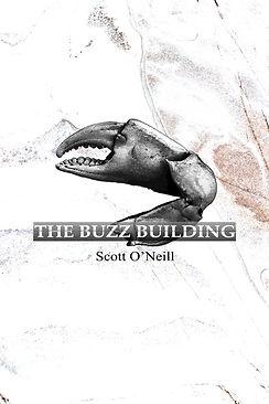 buzz cover copy.jpg