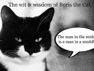 The cat speaketh the truth...