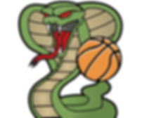 COBRAS WEBSITE BG LOGO.jpg