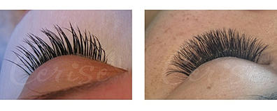 70bd3f8fb85 THE TRUTH ABOUT Eyelash Extensions
