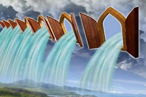 02-23-20: Windows of Heaven - 6th Declaration