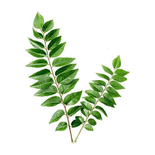 Organic Curry Leaf (pkt)