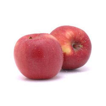 New Zealand Red Crisp Apple