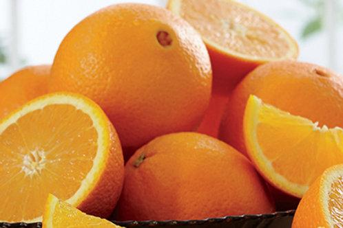 SA Navel Orange (L Size)