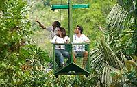 פנמה - יער הגשם גמבואה.jpg