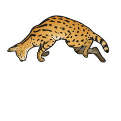 Leaping Serval cat decal