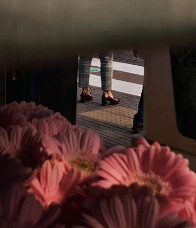 L'oeil des fleurs de Sarah Van Rij