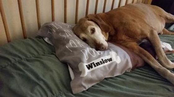 Winslowturns13c.jpg