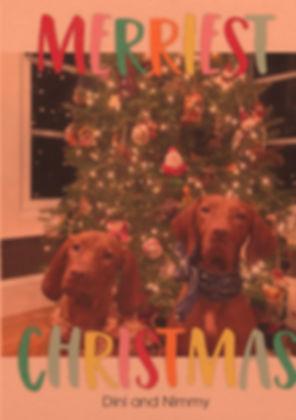 diniandnimmy2018christmas.jpg