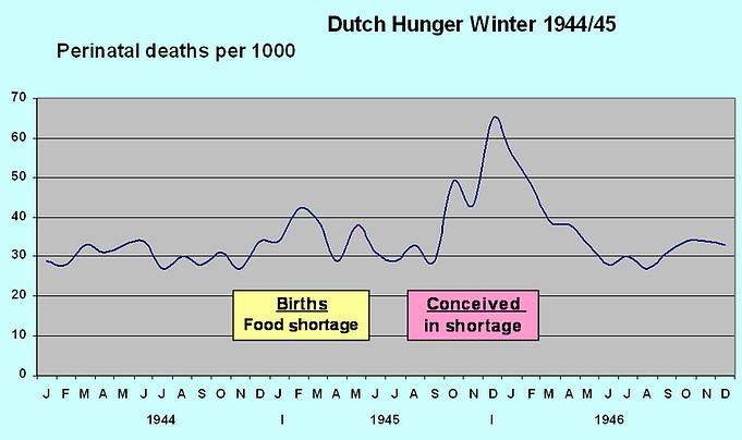 DutchHunger07-png.png